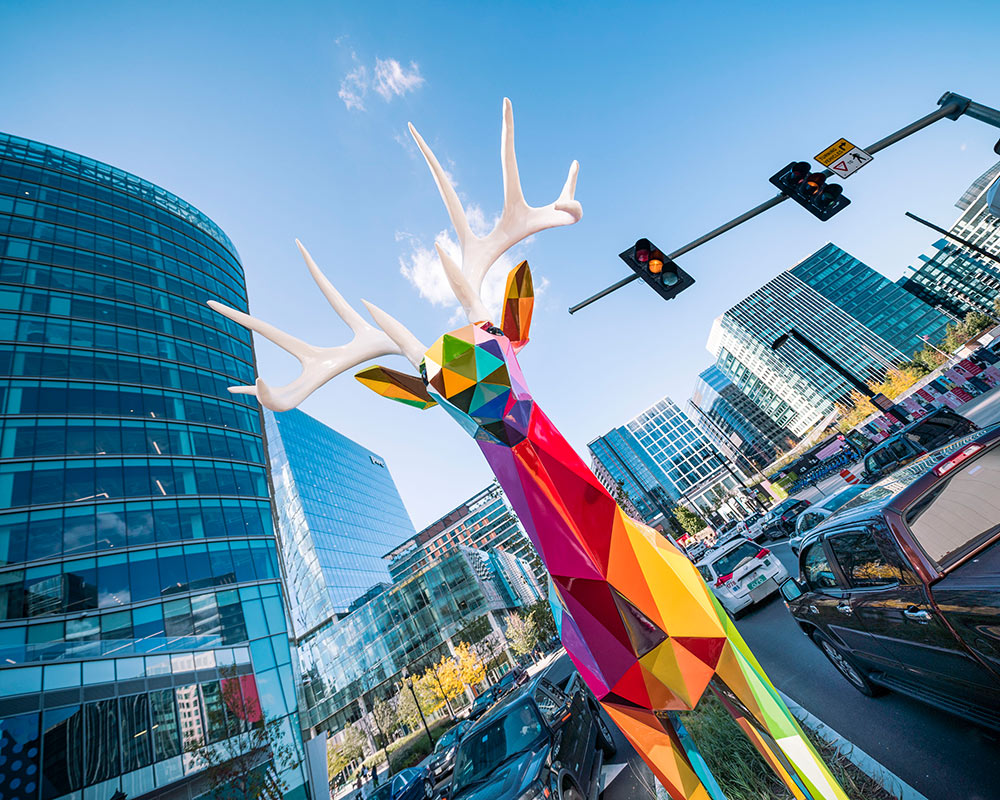 Outdoor-Intervention-Boston-Art-Sea-Land-Diversity-Wild-Octubre-2018-Pic-by-Justkids